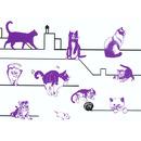 Zestaw artystyczny ze stempli koty Djeco