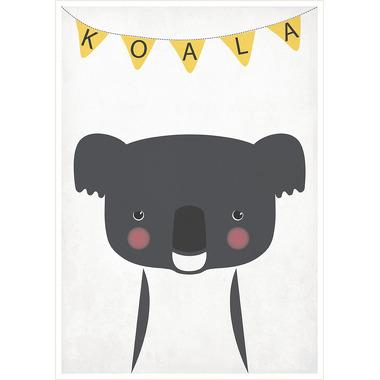 Plakat A3 Koala