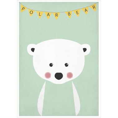 Plakat A3 Miś polarny