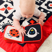 Baby Senses, Książeczka - Pierwsze obrazki