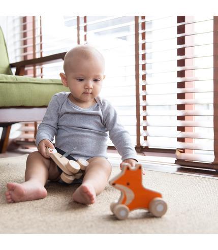 Plan Toys, Lis na kółkach