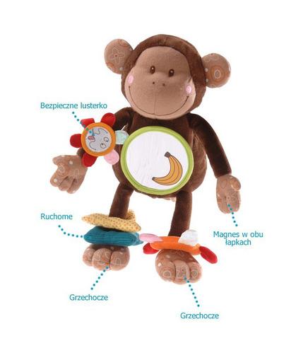 Lilliputiens, zwinna małpka Basile