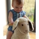Owieczka na Biegunach