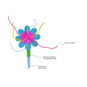 Kwiat wodny