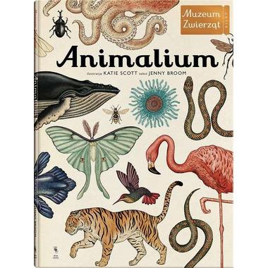 Animalium Muzeum Zwierząt wyd. 2