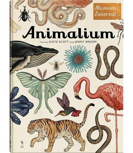 Platon, Animalium Muzeum Zwierząt wyd. 2