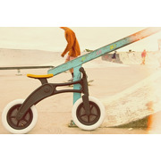 Wishbone Bike Recycled 3w1
