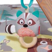 Skip hop, Mata edukacyjna Leśne zwierzątka w Tipi