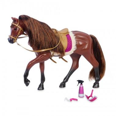 Lori, Ciemnobrązowy koń rasy American Quarter Horse  z akcesoriami do pielęgnacji