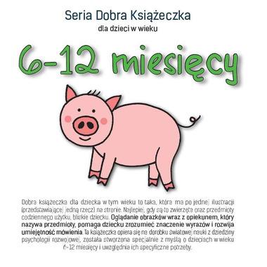 SERIA DOBRA KSIĄŻECZKA DLA DZIECI W WIEKU 6-12 MIESIĘCY, AGNIESZKA STAROK