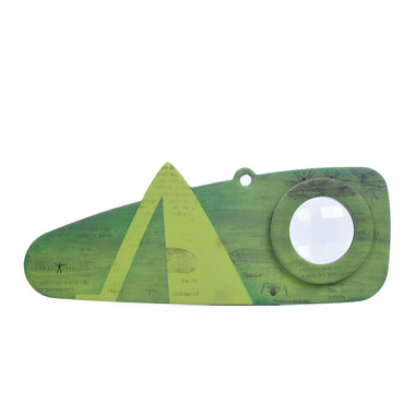 Londji, Grashopper- Insects eye